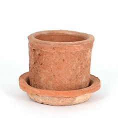 Between Dog and Wolf | Terracotta plant pot small