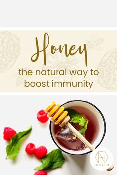 The high antioxidant profile of honey helps to prevent immune system damage and disease. In fact, the higher the antioxidant levels, the darker the honey. Hence why our Jarrah and Red Gum honeys are deliciously dark and luxurious! Our blog explains more. And sign up to the newsletter and you'll receive 20% off your first order. #honey #luxuryhoney #jarrahhoney #redgumhoney #nectahive #wellbeing Australian Honey, Health And Wellbeing, Gut Health, Best Honey, Oxidative Stress, Alternative Treatments, Balanced Diet, Honey Benefits