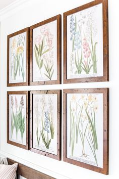 A free printable set of spring botanical art.