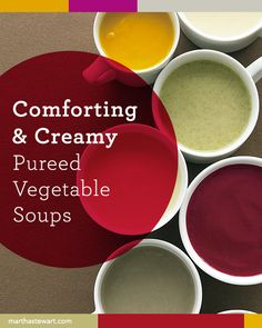Comforting & Creamy Pureed Vegetable Soups