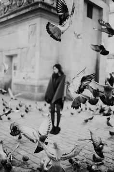 "❂ Once upon a time, when women were birds, there was the simple understanding that to sing at dawn and to sing at dusk was to heal the world through joy. The birds still remember what we have forgotten - That the world is meant to be celebrated I Terry Tempest Williams ""When Women Were Birds"""