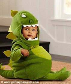 6dd61d38d034 111 Best Baby Dinosaur Costume images