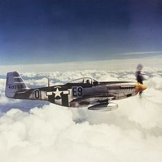 P-51 Mustang of the 361st Fighter Group