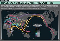 Tracking the Chromosome Map