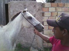 Égua Apaloosa e eu no Sidilândia em 30/05/2013.