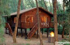 Cape Vidal Log Cabins, tucked away in the forest that grows along the sand dunes. Places To Travel, Places To See, Snow Resorts, Embroidery Designs, Wetland Park, Going On Holiday, Queen, Africa Travel, Holiday Destinations