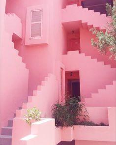La Muralla Roja has Ted tickled pink.