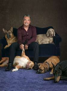 Cesar Milan...  I LOVE this man - the things he has done for the world of dogs...my personal hero<3