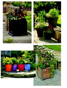 Planter ideas from Andrew P.