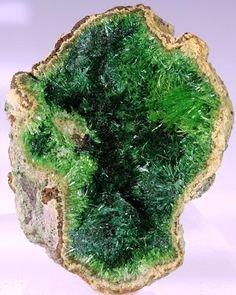 Cuprosklodowskite from the Congo