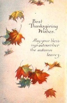 Best Thanksgiving Wishes. May your blessings out number the Autumn Leaves. Vintage Thanksgiving Postcard by bulldoggrrl Thanksgiving Blessings, Thanksgiving Quotes, Happy Thanksgiving, Thanksgiving Recipes, Thanksgiving Pictures, Thanksgiving Appetizers, Thanksgiving Outfit, Thanksgiving Wishes To Friends, Thanksgiving Traditions