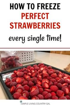 Garden Design Vegetable Freeze perfect berries every time with this super simple check list! There is a trick to freezing strawberries and it's easier than you think. Preserve food from your garden with this DIY list! Freezing Strawberries, Freezing Fruit, Frozen Strawberries, How To Store Strawberries, Freezing Vegetables, Fruits And Veggies, Frozen Fruit, Fresh Fruit, Frozen Strawberry Recipes