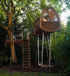 freaky but cool stilted Tree House