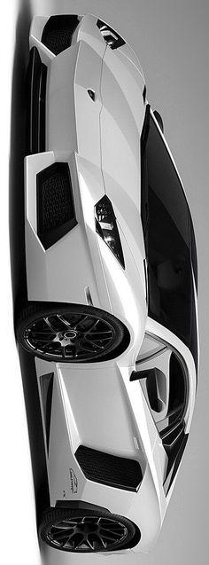 LUXURY Connoisseur || Kallistos Stelios Karalis || Lamborghini Aventador Oakley Design by Stelios