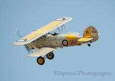 Nimrod II #biplane #1930s
