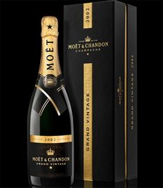 CHAMPAGNE. If I could, I would drink nothing else (boozewise, that is). Not necessarily Moet, but Moet's a fine place to start.