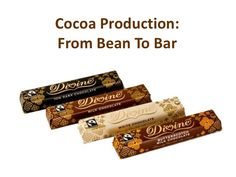 Cocoa Production:From Bean To Bar
