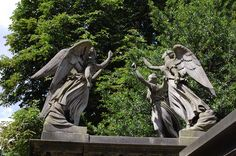 Weeping Angels in Kensal Green cemetery, London. There's a TARDIS-shaped gap in the midst of them, which can surely be no coincidence....
