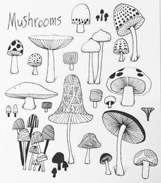 how to draw a pineapple Mushroom Art, Mushroom Drawing, Easy Drawings, Sketch Book, Drawings, Doodle Art, Flower Drawing, Art Journal, Doodle Drawings