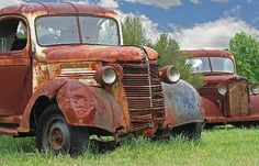 Great trucks found in a paddock at Warnervale nsw.