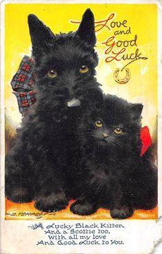 Love and Good Luck, Cat, Dog, friends, D. Tempest 1946   eBay