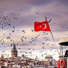 Turkey Country, Turkish Tea, Dream City, Daddy Issues, Istanbul Turkey, Sufi, Im In Love, Luxury Travel, Around The Worlds