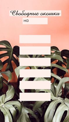 Makeup Wallpapers, Cute Wallpapers, Lash Lounge, Beauty Zone, Beauty Lash, Nail Room, Instagram Design, Instagram Highlight Icons, Tropical Leaves