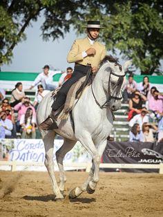 Jose Manuel Martín Japón y Bondadoso #domavaquera #lospalaciosyvillafranca #doshermanas #cantillana #elrocio #huelva #carmona #umbrete #almonte #andujar #guadix #baeza #villalbadelalcor #lapalmadelcondado #sanbartolomedelatorre #feriadesevilla #almonte #domadecampo #campeonatodomavaquera #huelva #horse #sevilla #caballos #cordoba #granada