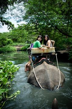 Riding an elephant in thailand