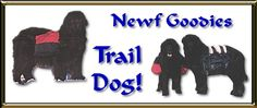 Newf Goodies- Trail Dog! - great site for info on going hiking with your dog, training tips for puppies and older dogs, what to do n the trail, gear, etc.