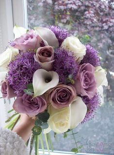 alliums, roses and arum lilies