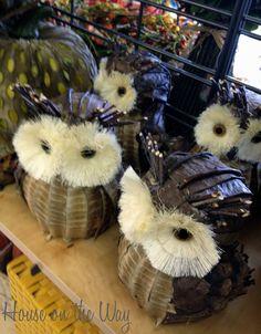 Owls as Fall Decor