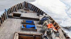 Дрвени бродови пуни људских костију пристижу на обале Јапана - http://www.vaseljenska.com/wp-content/uploads/2017/12/DPzDBJjW0AAXxq8.jpg  - http://www.vaseljenska.com/vesti-dana/drveni-brodovi-puni-ljudskih-kostiju-pristizu-na-obale-japana/