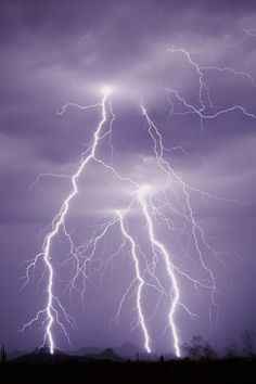 Lightning strikes Creation Museum zip line staffer. Wonder what Pat Robertson would have to say about this. Creation Museum, Gods Creation, Lightning Strikes, Lightning Pics, Lightning Storms, Lightning Bolt, Get Outdoors, Land Art, Natural Wonders