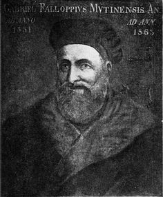 In 1564 physician Gabriello Fallopio recorded the use of thin chemically soaked linen sheets held in place by a ribbon. His treatise on syphilis, published in 1564 includes the first reference to the wearing of condom-like devices to protect against the disease