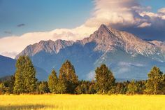 High Tatras, Most Beautiful, Beautiful Places, Countries Of The World, Mount Rainier, Trail, Explore, Mountains, Country
