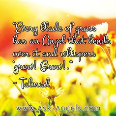 """""""Every blade of grass has an Angel that bends over it and whispers grow! Grow! -Talmud  #angel #whisper #grow #askangels"""