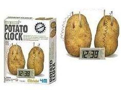 4M-Projects Potato Clock Green Science Kit