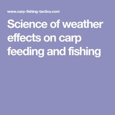 Science of weather effects on carp feeding and fishing