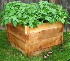 How to Build a Potato Crate Out of Pallets