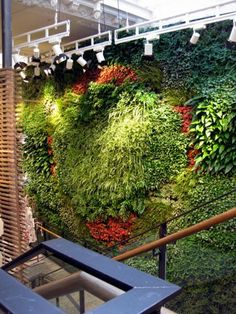 Anthropologie Wall (Biotecture Ltd) Vertical Planting, Vertical Gardens, Green Facade, Blue Bells, Cob Houses, Earthship, Green Walls, House Made, Interior Walls