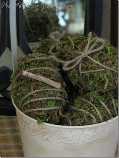 I think some moss eggs and the bird's nest on a pedestal would both look so pretty under the wire basket cloche.