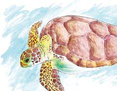 Estampa desenvolvida para a marca de surfwear Ilha Nativa, utilizada em sua coleção verão 2016. O trabalho consiste em uma tartaruga marinha desenhada a lápis e colorida com aquarela, em seguida tratada no Photoshop onde também foi aplicada a personalização.
