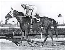 Kentucky Derby and Preakness Winner. Preakness Winner, Preakness Stakes, The Belmont Stakes, Triple Crown Winners, Derby Winners, American Pharoah, Sport Of Kings, Thoroughbred Horse, Racehorse