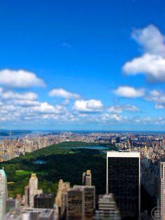 You love New York, I know, I do too.