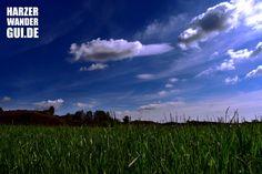 Feld/Wiese mit Berg bei Blankenburg Harz.  #harz #harzbild #sommer #wiese #feld #blankenburg #wandern #wandernimharz