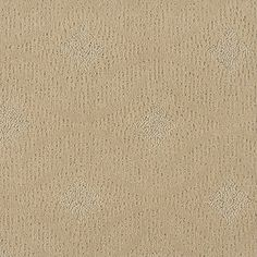 1000 Images About Shaw Anso Nylon Carpet On Pinterest