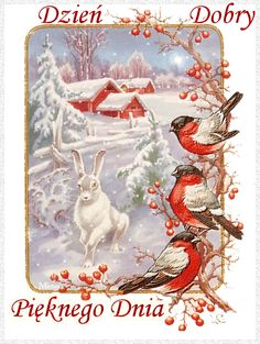 Cute Gif, Good Morning, Rooster, Birds, Animation, Winter, Painting, Animals, Amazing