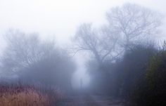 (Steve Garrington) Misty November Morning and Me - Misty morning on the Wentloog Levels between Cardiff and Newport.