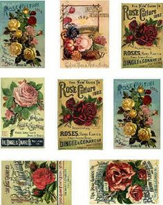 ♥ the digital bakery ♥: Free Printable labels